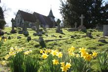 Church Yard In Spring