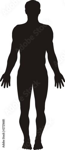 Fototapeta human body silhouette obraz