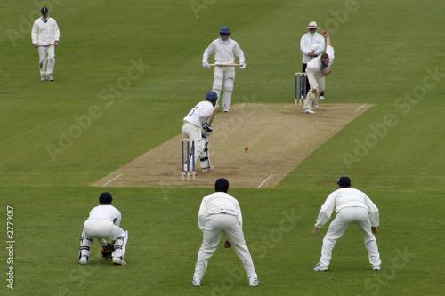 Cuadros en Lienzo cricket action