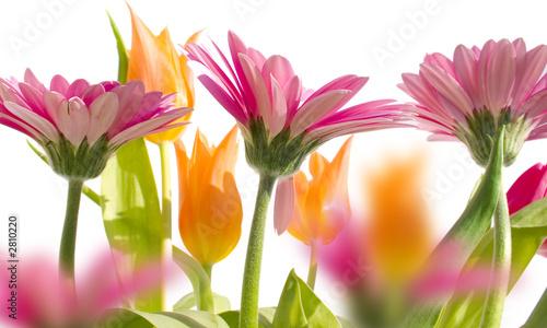 Plakat wiosenny ogród 3