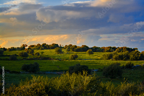 Poster Landscapes tramonto nelle campagne