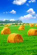 canvas print picture hay bales