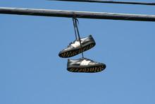 Hanging Seakers