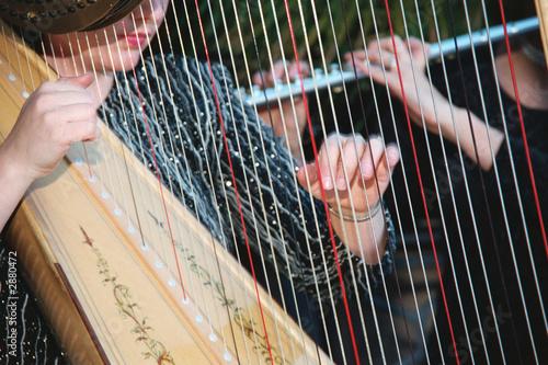 Carta da parati harp and flute performers at wedding