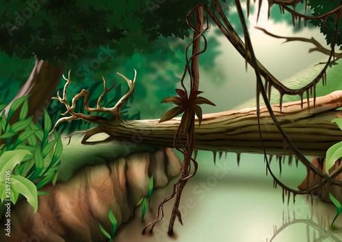 Foto-Plissee - jungle (von Roman Dekan)