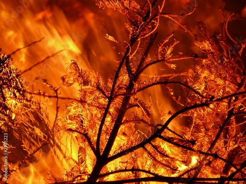 Valokuva feuersturm