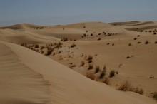 Dunes Du Grand Erg Oriental