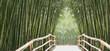 bambusallee