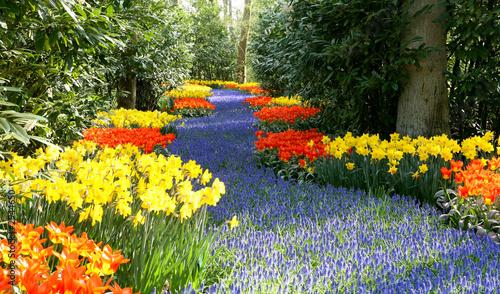 Fotobehang Tuin spring in garden