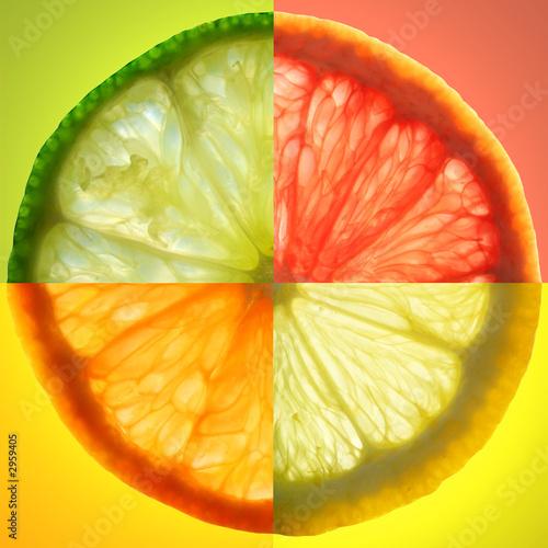 Fototapety, obrazy: citrus slice