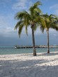 tropical beach florida