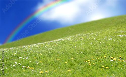Fotografia prairie rainbow grass