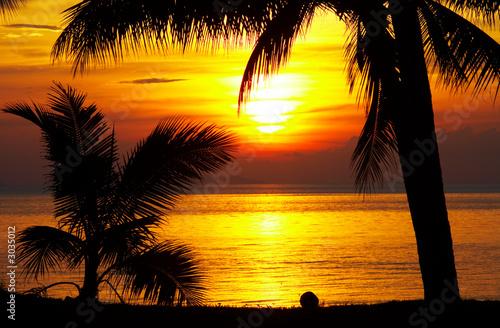 Foto-Leinwand - tropic sunset (von Dmitry Ersler)