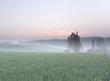 canvas print picture - sunrise over renewable energy crops