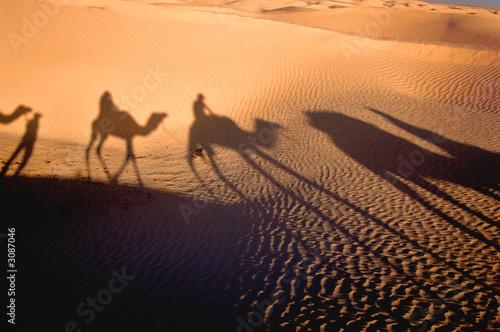 Poster de jardin Desert de sable shadow of karavan