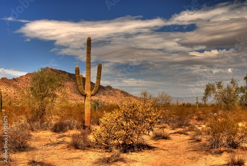 Photo  desert mountain