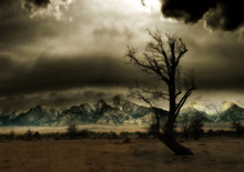 Mountains & Tree In Storm