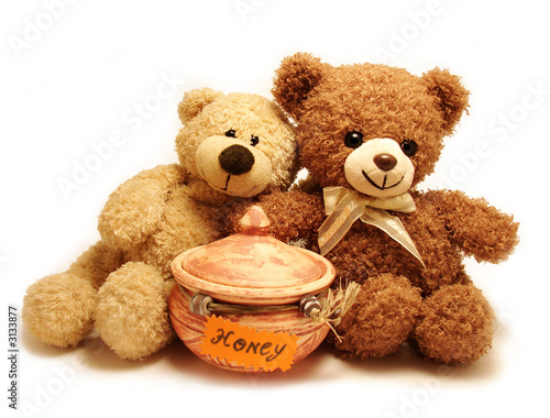 teddy-bears & honey #3133877