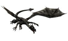 Dragon No. 7