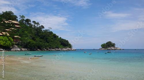 In de dag Groene koraal salang beach