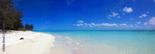 Printed kitchen splashbacks Australia playa de heron island