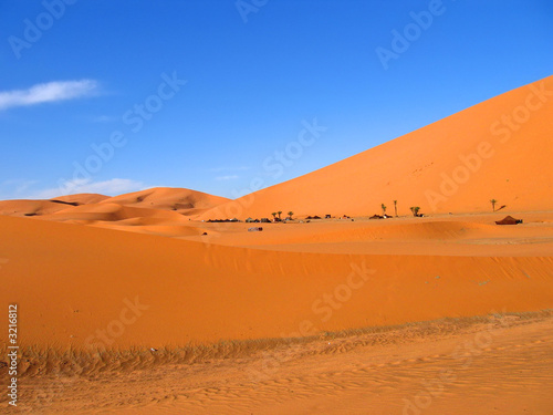 Canvas Prints Cuban Red red and brown sand dunes, erg chebbi, merzouga, morocco