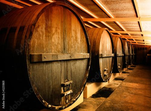 Fototapeta na wymiar winery barrels