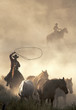 canvas print picture - catching wild horses