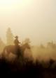 canvas print picture - cowboy silhouette