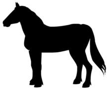 Belgian Draft Horse Silhouette