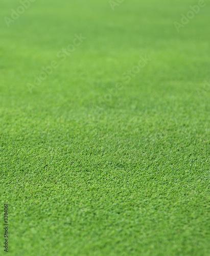 Poster Golf fine green grass