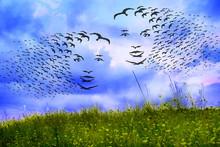 Vogelmärchenwiese