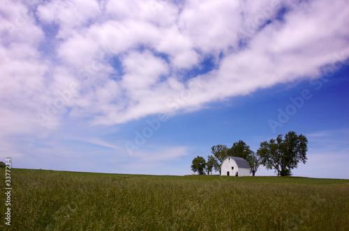 Printed kitchen splashbacks Purple rural landscape