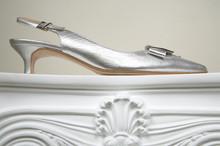 Female Silver Shoe