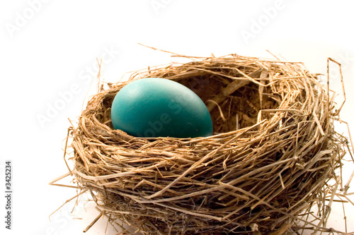 Photo  blue egg