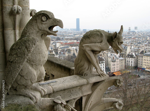 cityscape of paris from cathedral of notre dame de paris Wallpaper Mural