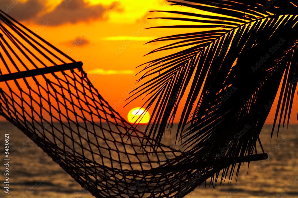 Fototapeta palm, hammock and sunset