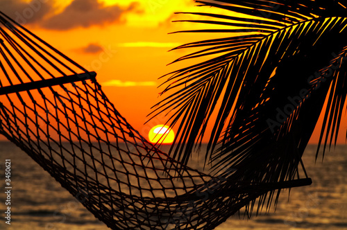 Fototapeta palm, hammock and sunset obraz