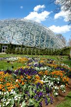 Saint Louis Botanical Garden