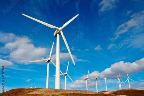 Poster Molens Wind turbines farm on sunset in winter