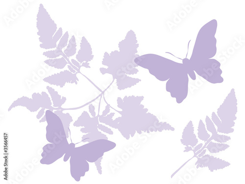 Photo  Butterflies and ferns in purple tones on a white background.