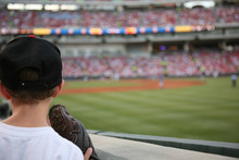 Young Baseball Fan Watches The...