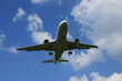 Flugzeug bei der Landung I
