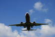 Flugzeug bei der Landung V