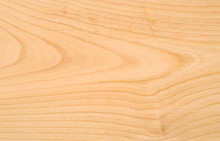 Unpolished Beech Wood Texture ...