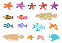 Fishes And Starfish