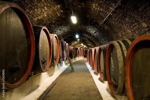 Old wine barrels Fototapet