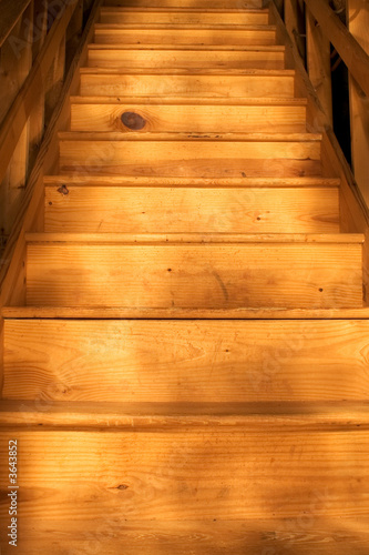 Photo Stands Stairs Bare wood stairway (bottom point of view)