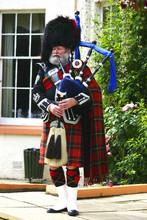A Scottish Bagpiper In Full Highland Kilt Dress And Beard