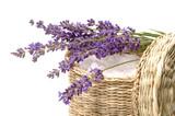 Fototapeta Lavender - lavender bath items
